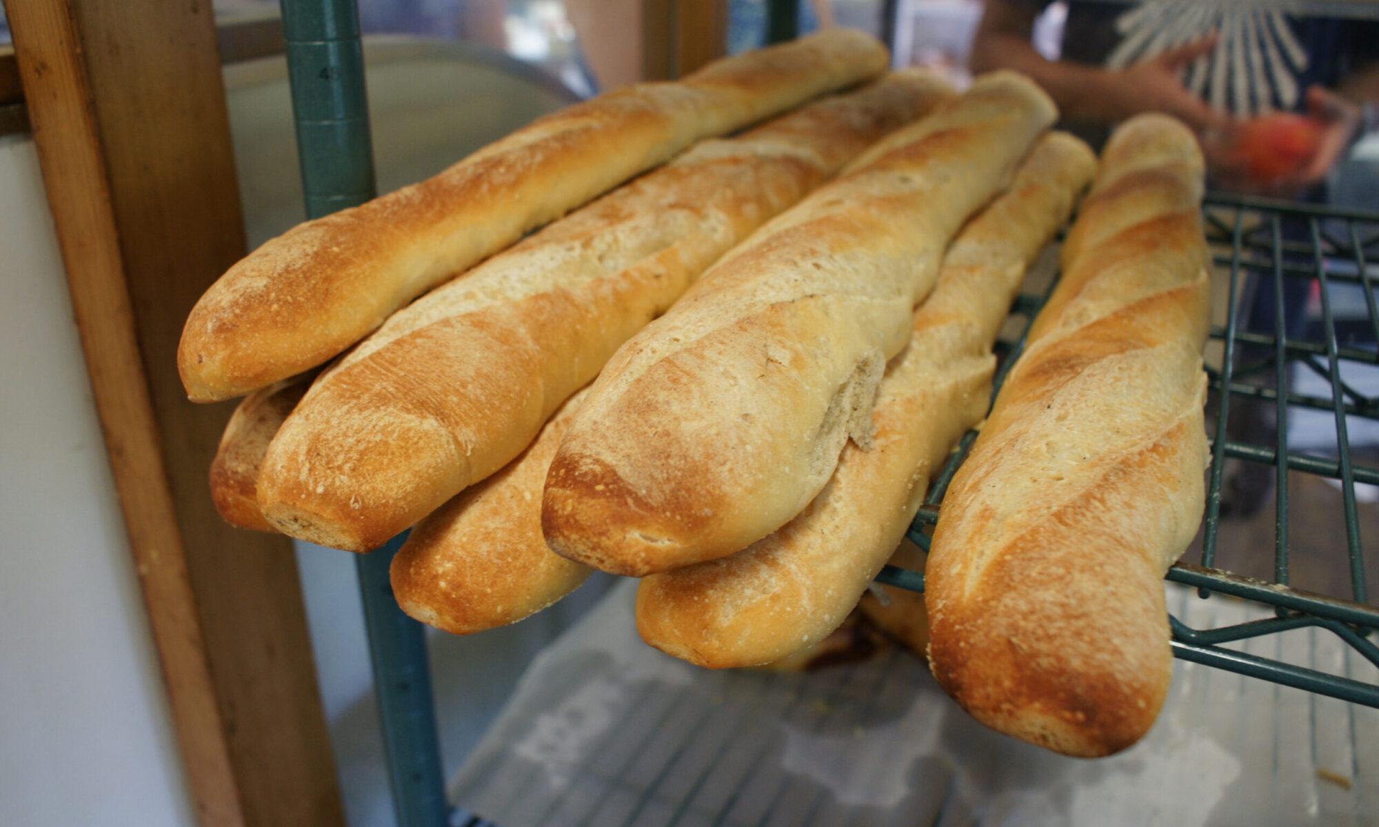 Breadzilla